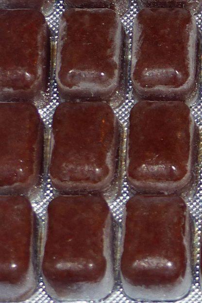 Daphnien 100g - Blister-305