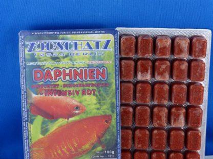 Daphnien 100g - Blister-155
